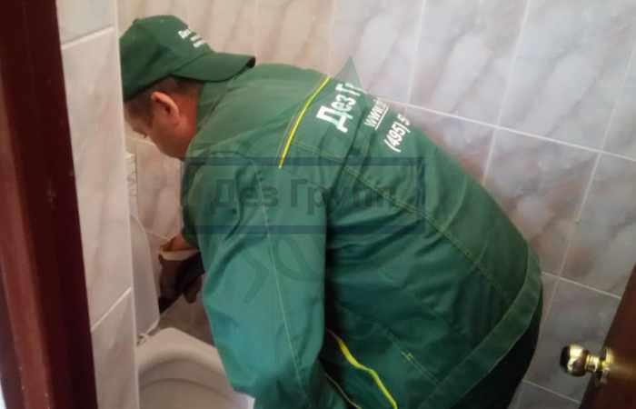 Профилактика неприятного запаха в туалете - регулярно проверяйте состояние элементов сети