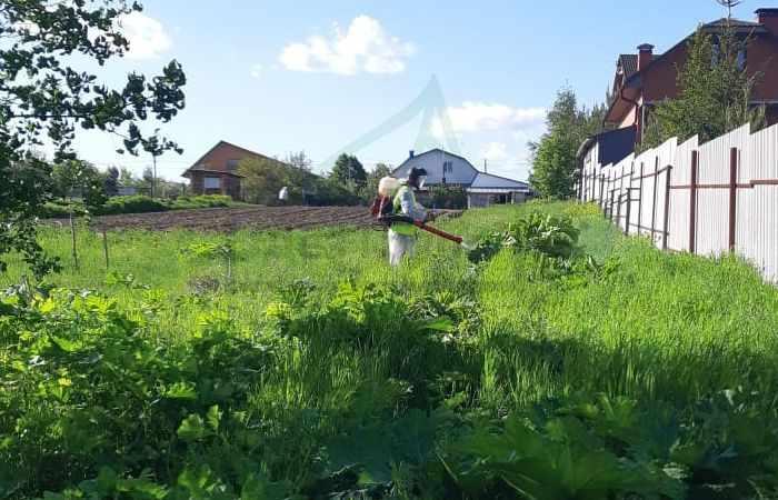 Обработка сада осенью от вредителей и болезней - заказать услугу Дез Групп
