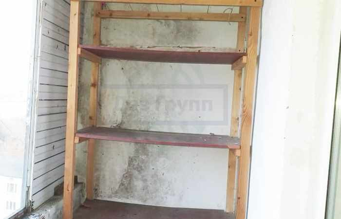 Опасна ли плесень на стенах в квартире