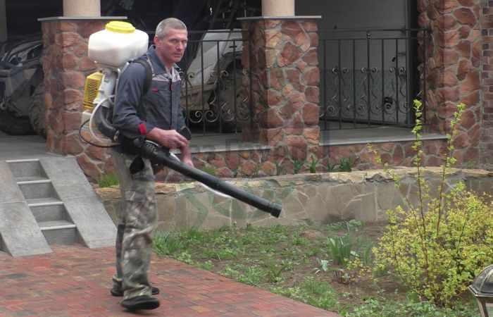 Обработка сада поздней осенью от вредителей в Москве - служба Дез Групп