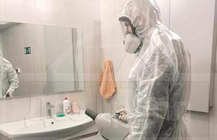 Насекомые в туалете и ванной как от них избавиться