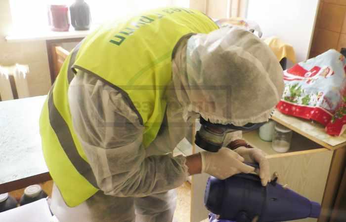 Уничтожение бактерий и вирусов